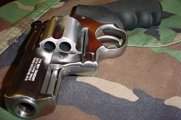 Револьвер против гризли. 1