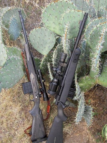 Последний довод пионера - скаутская винтовка