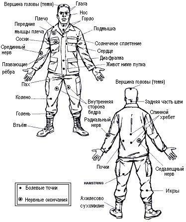 Куда и как бить противника: о болевых точках тела. Видео. 14534.jpeg