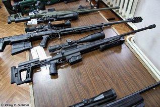 Армейская снайперская винтовка крупнокалиберная - AСВК