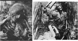 """О """"Евгенических программах и проектах нацисткой Германии"""""""